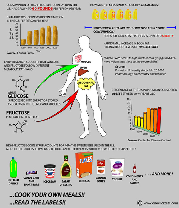 711x825xhigh_fructose_corn_syrup_chart