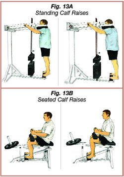 nov2012_calf_raises